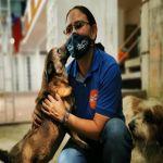 En Palmira velan por el bienestar de mascotas y animales